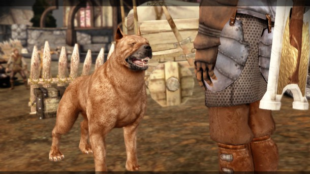 Dragon Age Extra Dog Slot